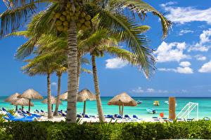 Обои Тропики Побережье Курорты Пальмы Пляж Облака Деревья Caribbean Природа фото