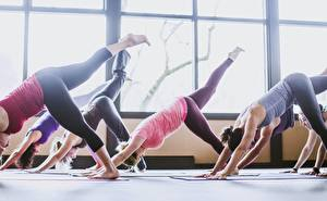 Фото Фитнес Ноги Окно Йога Растяжка упражнение group, physical activity Спорт Девушки
