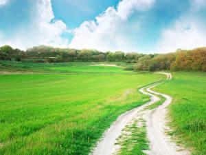 Фотографии Пейзаж Поля Дороги Луга Лето Траве Облака Природа
