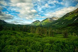 Фотографии США Горы Лес Небо Пейзаж Аляска Облако Chugach National Forest Природа