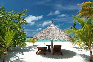 Картинки Тропики Небо Шезлонг Пляж Природа