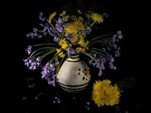 Обои Одуванчики Колокольчики - Цветы Ваза Черный фон Цветы фото