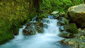 Фото Мексика Водопады Камни Мох Tres Marias Природа