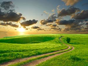 Фотографии Пейзаж Дороги Поля Небо Луга Трава Облачно Природа