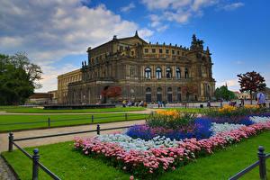 Обои Дрезден Германия Парки Маргаритка Дворец Газон Zwinger Города фото