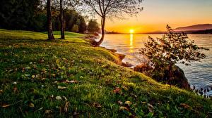 Обои Побережье Рассветы и закаты Озеро Пейзаж Трава Солнце Природа фото
