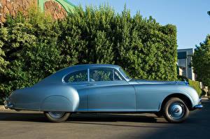 Фотографии Bentley Винтаж Голубые Сбоку 1953-55 R-Type Continental Sports Saloon AT Автомобили
