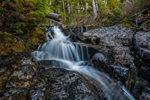 Обои США Водопады Камни Калифорния San Juan Ridge Creek Природа фото