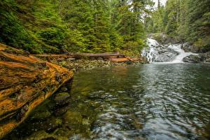 Картинки Канада Водопады Речка Леса Vancouver Island Fletcher Falls Walbran