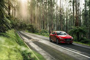 Картинка Мазда Леса Дороги Красный Металлик 2016 3 SP25 Astina Hatchback Авто Природа