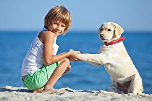 Обои Побережье Собаки Мальчики Ретривер Дети Животные фото