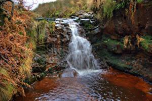 Обои Англия Водопады Утес Мох Rivington Природа