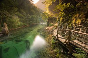 Фотография Словения Реки Скала Bled Природа