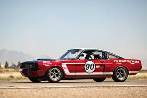 Обои Shelby Super Cars Винтаж Стайлинг Красный Сбоку 1966 GT350 SCCA B-Production Race Car Автомобили