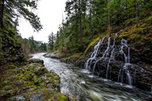 Картинка Канада Речка Водопады Леса Ванкувер Мох Sooke River