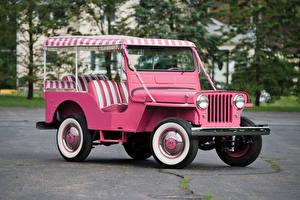 Картинка Винтаж Розовые 1960 Willys Jeep Gala Surrey (DJ-3A) Автомобили