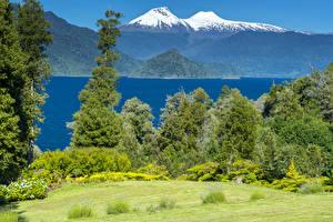 Фотографии Чили Пейзаж Парки Горы Реки Кусты Conguillio National Park Природа