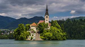Фото Словения Остров Озеро Храмы Лестницы Bled Города