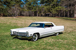 Обои Cadillac Ретро Белый 1967 DeVille Convertible Автомобили фото