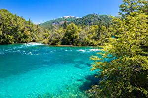 Картинки Чили Парки Реки Горы Деревья Conguillio National Park Природа
