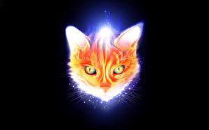Обои Векторная графика Кошки Морда Животные