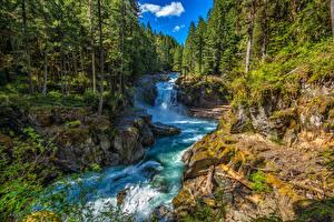 Фотография Штаты Леса Водопады Камень Вашингтон Silver Falls Ohanapecosh