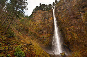 Картинка США Водопады Скала Деревья Multnomah Falls Oregon Природа