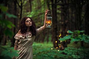 Картинки Леса Керосиновая лампа Платье Девушки