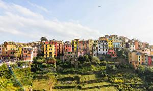 Фото Италия Здания Поля Небо Чинкве-Терре парк Лигурия Corniglia Города