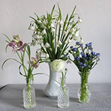 Картинка Букеты Ландыши Лютик Орхидеи Ваза