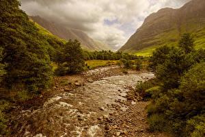 Картинка Шотландия Гора Ручей Кустов Природа