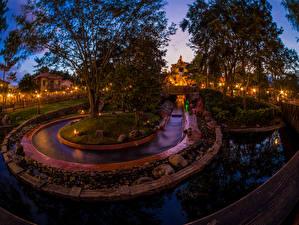 Обои США Парки Диснейленд Калифорния Анахайм HDR Дизайн Ночь Деревья Природа фото