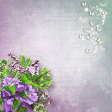Картинки Сирень Примула Бабочки Шаблон поздравительной открытки