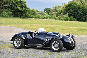 Фотография Винтаж Черный Металлик 1948-53 Frazer Nash Le Mans Replica Машины