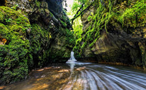 Фото Водопады Утес Мох