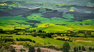 Картинка Италия Пейзаж Поля Леса Дома Тоскана Природа