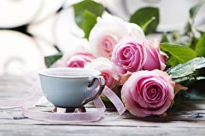 Картинки Розы Кофе Чашка Розовый Цветы