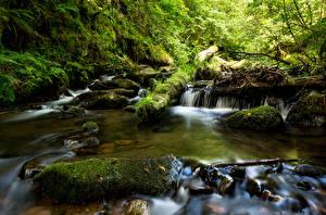 Фотографии Франция Водопады Камень Мох Ручей La Monne