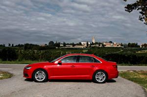 Обои Audi Красный Сбоку Металлик 2015 A4 2.0 TDI ultra Автомобили фото