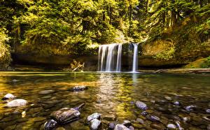 Картинка США Водопады Камень Butte Creek Falls Oregon