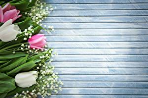 Фото Ландыши Тюльпаны Шаблон поздравительной открытки