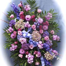 Обои Букеты Розы Георгины Гортензия Левкой Лента Дизайн Цветы фото