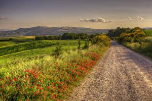Картинки Италия Пейзаж Дороги Поля Природа