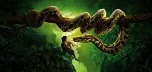 Картинка Змеи Мальчики Ствол дерева The Jungle Book 2016 Фильмы