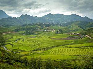 Обои Поля Вьетнам Горы Природа фото