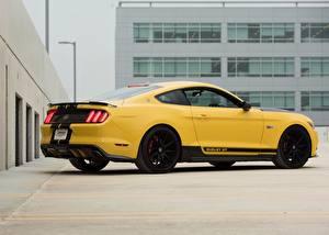 Фото Ford Желтая Сбоку Mustang Shelby GT машины
