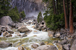 Фотографии США Парки Камни Йосемити Ствол дерева Ручей