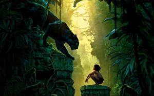 Картинка Большие кошки Пантеры Мальчики The Jungle Book 2016 Фильмы Животные