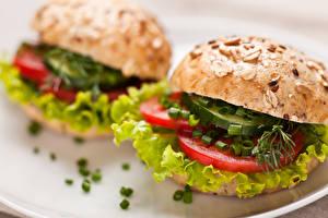 Фото Быстрое питание Бутерброды Овощи Булочки Продукты питания