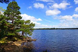 Фото Ирландия Побережье Небо Деревья Облака Muckross Lake Kerry Природа